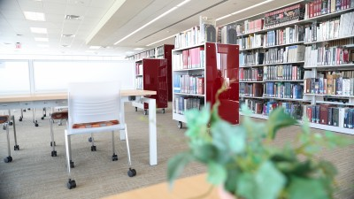 Image of bookshelves in library