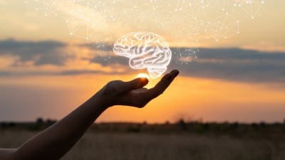 A hand holding a drawing of a white brain with a sunset in the background